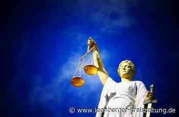 Prozess am Amtsgericht Leonberg: Helmut Epple droht nun doch Gefängnis - Leonberger Kreiszeitung