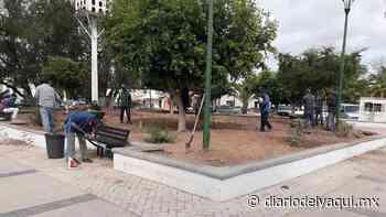 Critican pasto sintético en plaza de Huatabampo - Diario del Yaqui