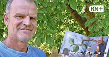 Warum Wolf Paarmann aus Altenholz fasziniert ist von Ameisen - Kieler Nachrichten