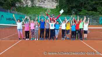 """Tennisclub Dettingen - Erstes Kleinfeldturnier der """"Horber Runde"""" durchgeführt - Schwarzwälder Bote"""