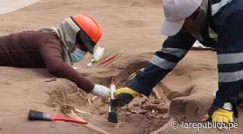 Moquegua: recuperaron 38.000 especímenes arqueológicos en Lomas de Ilo - LaRepública.pe