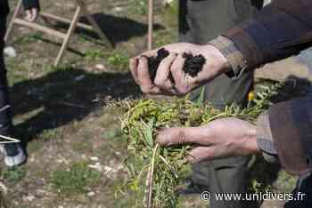 Vie du sol et plantes sauvages Champ des Bruyères - Unidivers
