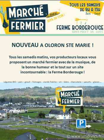 Marché des producteurs à La Ferme Borderouge Oloron-Sainte-Marie - Unidivers