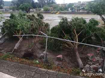 Lluvia en Jamay deja afectaciones materiales - UDG TV