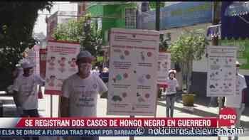 Detectan dos casos del llamado hongo negro en Guerrero - Noticieros Televisa