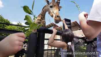 Maubeuge : le conseil municipal vote en faveur d'un syndicat mixte pour le zoo - La Voix du Nord