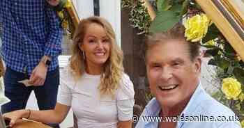 David Hasselhoff stuns pub after turning up for two-year-old's birthday party - Wales Online