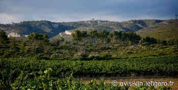 Provence : Bandol en puissance - Le Figaro