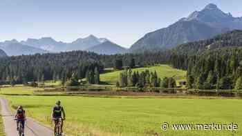 Verkehr um Mittenwalder Schmalensee: Tabuzone Buckelwiesen - Merkur.de