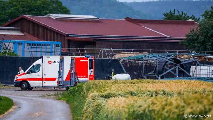 Heuballen erschlägt Jungen bei Bad Boll: Neunjähriger schwebt in Lebensgefahr - SWP