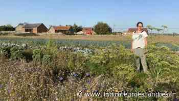 Sortie : Des visites à la ferme programmées au Doulieu et à Laventie - L'Indicateur des Flandres