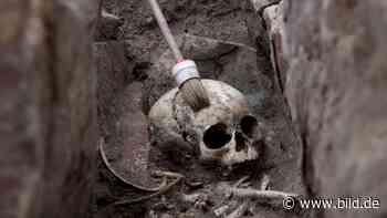 Archäologie: 1000 Jahre altes Kindergrab bei Eisleben entdeckt - BILD