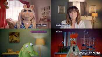 Miss Piggy hat nun einen Video-Blog: Neue Serie mit den Muppets - RND
