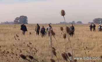 Lindo domingo para cazar, en el calabozo: detienen a seis hombres realizando caza furtiva en La Plata - Diario El Dia