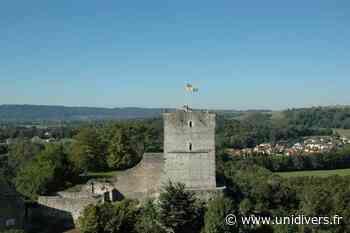 Accueil des visiteurs en habits d'époque Tour médiévale de Morestel - Unidivers