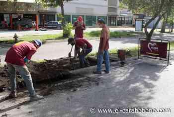 Alcaldía de Valencia saneó drenajes en la avenida Michelena - El Carabobeño