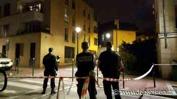 «J'ai entendu un long gémissement» : règlement de comptes à Clamart, deux blessés par arme à feu - Le Parisien