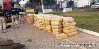 Carga com cinco toneladas de maconha é apreendida em Santa Isabel - O Diário