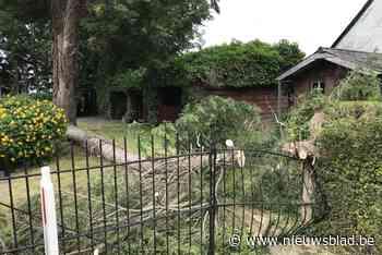 Afgeknakte boom vernielt poort in voortuin
