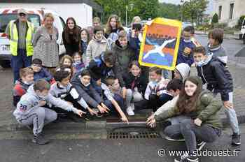 Biganos : les élèves de l'école Jules-Ferry sensibilisés à l'environnement - Sud Ouest
