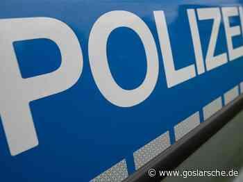 Einkaufswagen in Auto gerollt - 500 Euro Schaden - GZ live Seesen - Goslarsche Zeitung