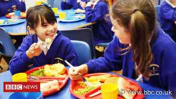 Will my child get free school meals this summer?