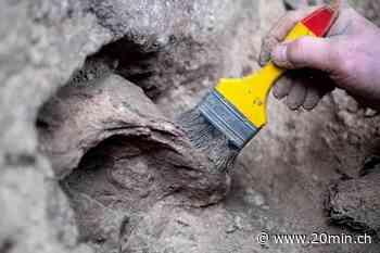 Herzberg am Harz (D) - Was ein verzierter Riesenhirsch-Knochen über den Neandertaler aussagt - 20 Minuten