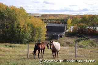 Weekly Ponderings: People brought character and culture to Peace River Part 45 - Vermilion Standard