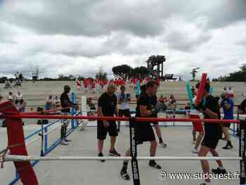 Pessac : un ring de boxe à ciel ouvert au Bourgailh - Sud Ouest