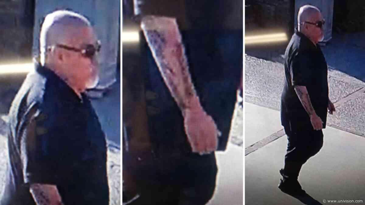 Este sujeto vandalizó la iglesia de San Patricio, en Merced, y la policía lo busca - Univision
