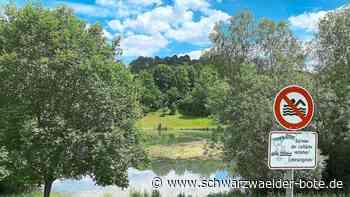 Planung in Wildberg - Keine Brücke für Gültlinger See - Schwarzwälder Bote