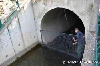 Lunel : Un filet pour retenir les déchets du canal - lemouvement.info