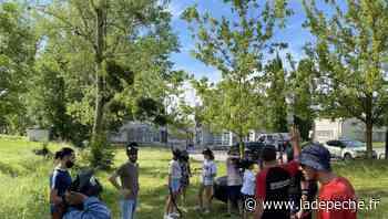 Graulhet. L'été débute aujourd'hui à la MJC - ladepeche.fr