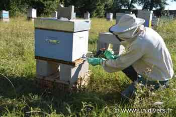 Visite du rucher pédagogique le Miel des Landais Parentis-en-Born mercredi 2 juin 2021 - Unidivers