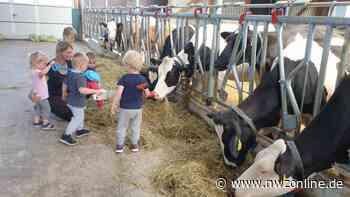 Tagesmutter in Augustfehn: Kuhstall statt Kita - Kinderbetreuung auf dem Bauernhof - Nordwest-Zeitung