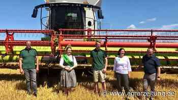 Ernte 2021: Gerste in Sachsen noch zu feucht - agrarzeitung online