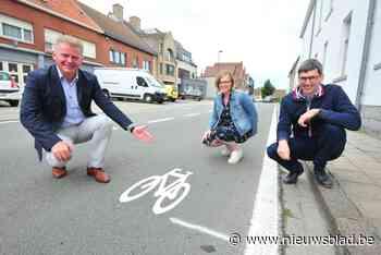 Stad beschildert centrumstraten met fietsen en ijvert voor trajectcontrole