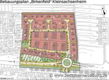 Neubaugebiet Birkenfeld in Kleinsachsenheim: Parkraum dominiert Diskussion - Sachsenheim - Bietigheimer Zeitung