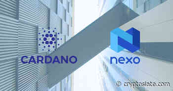 Cardano (ADA) partners with crypto lending player Nexo - CryptoSlate