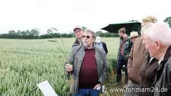 Feldführung in Friedrichsthal bei Gremersdorf: Landwirte ließen sich zum Getreideanbau beraten - fehmarn24.de