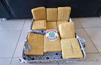Cabeleireira é presa transportando maconha no Aeroporto Internacional dos Guararapes - Diário de Pernambuco