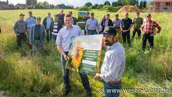 Rotary-Projekt in Oyten: Ein Blühstreifen gegen das Insektensterben - WESER-KURIER - WESER-KURIER