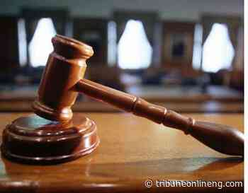 Court convicts ex-Ashaka cement staff over stealing in Gombe - NIGERIAN TRIBUNE