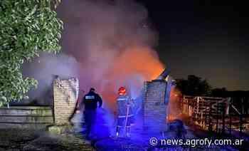 Se incendió un tambo, perdió el trabajo de 20 años y ya trabaja en la reconstrucción - Agrofy News