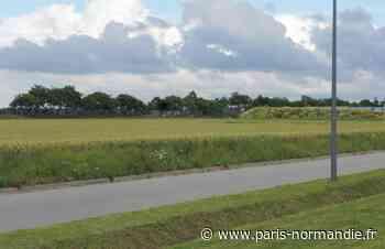 À Octeville-sur-Mer, un débat autour du projet d'espace culturel - Paris-Normandie