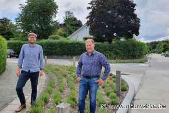 """Strijd tegen wateroverlast, maar niet grootschalig: """"Grotere... (Tervuren) - Het Nieuwsblad"""