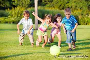 Sport- en fitnessbox, pannaveld, fotozoektocht, picknickzone... (Lichtervelde) - Het Nieuwsblad