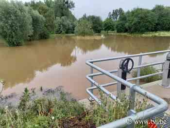Nieuwe overstromingszone in Hoeselt bewijst meteen haar nut - TV Limburg