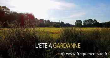 Le programme des festivités de l'été à Gardanne - Frequence-Sud.fr