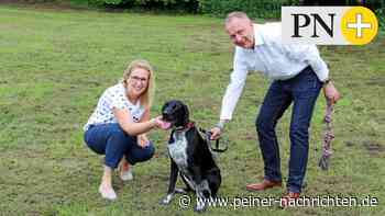 Hunde haben jetzt eine große Spielwiese in Peine-Telgte - Peiner Nachrichten